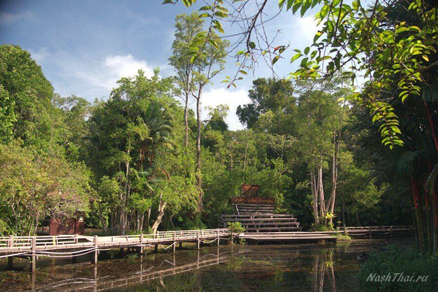 Первый вид парка Pa Phru To Daeng